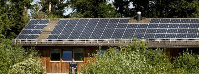 Photovoltaik auf Forstheim in Wallisellen